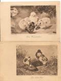Puisori  - lot 6 carti postale vechi ( G. Heuer & Kirmse - Germania ), Necirculata, Printata, Europa