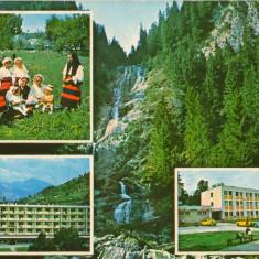 CPI (B8259) CARTE POSTALA - JUD. MARAMURES. IZVORUL CAILOR, SIEU, BORSA, SUGATAG - Carte Postala Maramures dupa 1918, Circulata, Fotografie