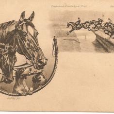 Cai - lot 9 carti postale vechi ( G. Heuer & Kirmse - Germania ), Necirculata, Printata, Europa