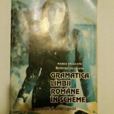 GRAMATICA LIMBII ROMANE IN SCHEME-MARIA TICLEANU - Culegere Romana
