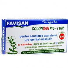 Colonsan Pro Cerat Cu Salvie Bio (barbati)19g, FAVISAN - Produs tratarea prostatei