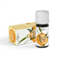 Ulei eteric Eucalipt, Vivasan - Set parfum