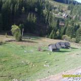 Schimb teren la Mestecanis - Teren de vanzare, 7000 mp, Teren intravilan