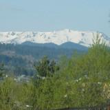 Schimb teren la munte - Teren de vanzare, 3000 mp, Teren intravilan