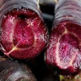 Morcov mov 30 seminte rare