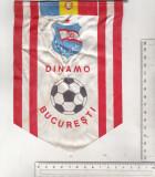bnk div Fanion Dinamo Bucuresti
