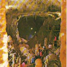 CPI (B8291) CARTE POSTALA - PESTERA URSILOR (CHISCAU) - BIHOR (122/555) - Carte Postala Crisana dupa 1918, Necirculata, Fotografie