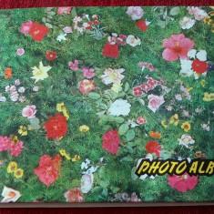 album foto vintage