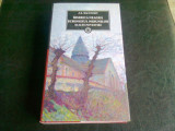 BISERICA NEAGRA. ECHINOXUL NEBUNILOR SI ALTE POVESTIRI - BACONSKY, Curtea Veche, 2016