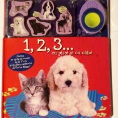 1, 2, 3... CU PISOI SI CU CATEI - carte cu PUZZLE si MELODIE (Reader's Digest) - Carte personalizata