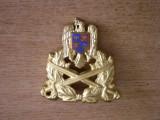 BDEU - EMBLEMA MILITARA - PIESA DE COLECTIE