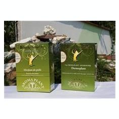 Ceai Dermoplant Aroma Plant Cod: 295 - Ceai naturist