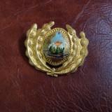 Insigna cuc  RSR perioada comunista !