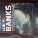 Folosirea armelor Iain M. Banks - Filosofie