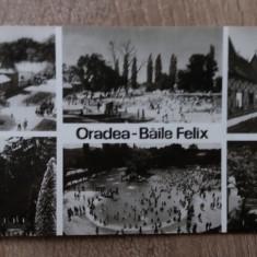 RC - ORADEA 45 - Carte Postala Crisana dupa 1918, Necirculata, Fotografie
