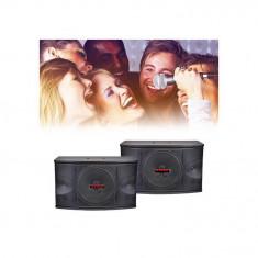 SISTEM PROFESIONAL 2 BOXE PASIVE, 300W, SONORIZARI, KARAOKE, INCINTE AUDIO 3 CAI., Boxe compacte, 250 - 500 W