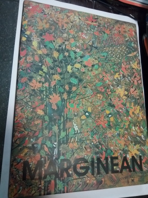VIOREL MARGINEAN - Pictura.Desen.Obiect - 2004 ( album) foto