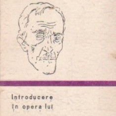Introducere in opera lui G. Bacovia