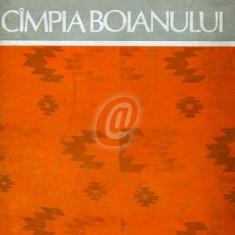 Zona etnografica Campia Boianului - Carte Arta populara