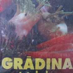 Gradina noastra de legume -M. Vladut, Serban Popa - Carte gradinarit