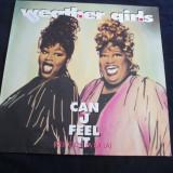 The Weather Girl - Can U Feel It _ vinyl , 12 , Germania _ disco , anii'90