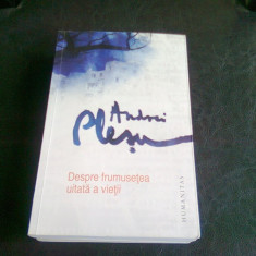 DESPRE FRUMUSETEA UITATA A VIETII - ANDREI PLESU - Filosofie