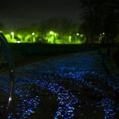 Pietricele fosforescente gri care lumineaza albastru - Ghiveci