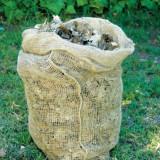 2 saci biodegradabili din iuta - Accesorii gradina