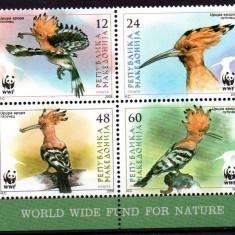 MACEDONIA 2008, Fauna - Pasari, WWF, serie neuzată, MNH, Nestampilat