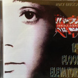 13TH FLOOR ELEVATORS - GRAKLE DEBACLE, 2002 - Muzica Rock, CD
