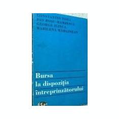 Constantin Fota - Bursa la dispozitia intreprinzatorului