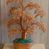 Copacel fengshui, bonsai  de jad