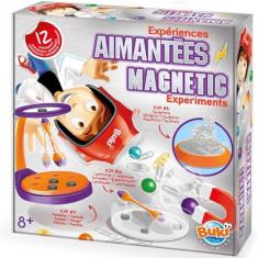 Kit Experimente Magnetice - Jocuri Stiinte