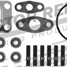 Set montaj, turbocompresor - REINZ 04-10022-01 - Turbina