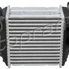 Intercooler, compresor AUDI A3 1.9 TDI - TOPRAN 114 303 - Intercooler turbo