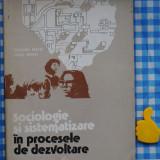Sociologie si sistematizare Mioara Matei Ioan Matei - Carte Sociologie