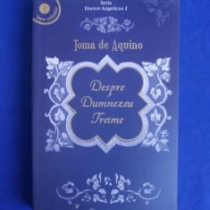 TOMA DE AQUINO - DESPRE DUMNEZEU TREIME * VOL. 1 ( TEXT BILINGV ) - 2004