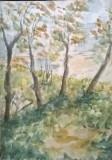Dambovita peisaj pe malul apei, Peisaje, Acuarela, Impresionism