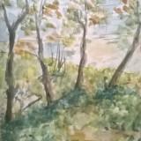 Dambovita peisaj pe malul apei - Pictor roman, Peisaje, Acuarela, Impresionism
