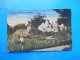 HOPCT  2  T  CLUJ GRADINA BOTANICA IN ANUL 1916    -NECIRCULATA, Printata