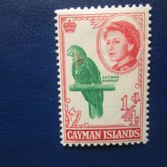 TIMBRE ANGLIA/COLONII CAYMAN ISLANDS, Nestampilat