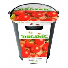 Kit de Cultivat - Galetusa + Seminte de Rosii Ecologic/BIO, Buzzy Seeds