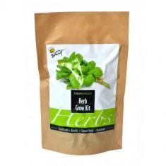 Punga pentru Cultivare + Seminte de Busuioc, Buzzy Seeds