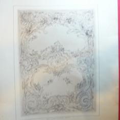 Litografie- Arta Decorativa -Autor Friling- cca.1900 - Ed.Germania, 50x36 cm