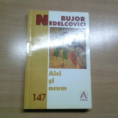 AICI SI ACUM-BUJOR NEDELCOVICI