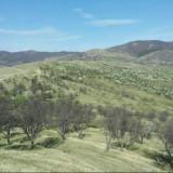 Vand teren - Teren de vanzare, 6000 mp, Teren extravilan