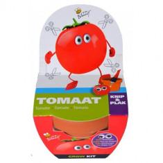 Kit Mini de Cultivat pentru Copii - Rosii, Buzzy Seeds