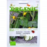 Seminte de Castraveti pentru Cultivare Ecologic/BIO, Buzzy Seeds