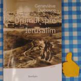 Drumul spre Ierusalim Genevieve Duboscq - Roman