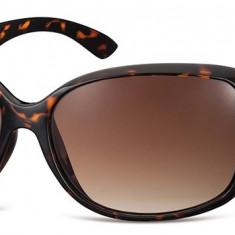 Ochelari de soare dama Montana Eyewear S36B turtle S36B - Ochelari de soare Montana Eyewear